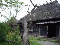 Semishigure2