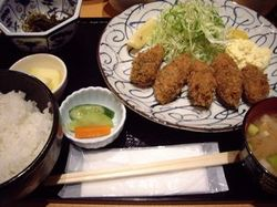 Shibata1