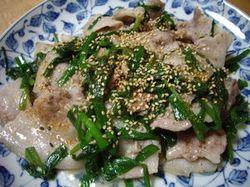 Shiodare02